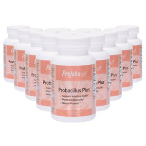 Picture of Probacillus Plus™ - 60 capsules (12 Pack)